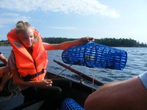 kräftfiske med guide i unden (12)